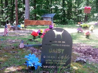 Coon Dog Graveyard markers
